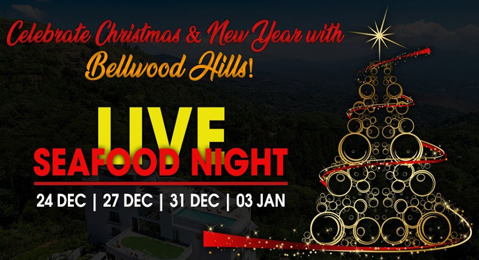 Celebrate Christmas and New Year Festive Season